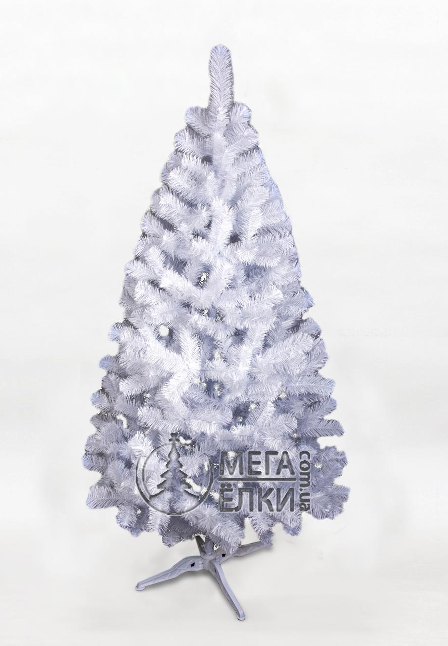 Елка белая «Юта»